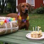 Ella-4år-tårta-med-ljus